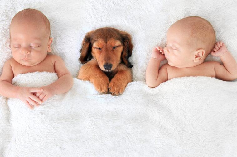 dieren-namen-voor-babys